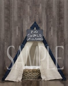 Teepee Backdrop on planks no girls allowed sample