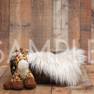 giraffe basket barnwood digital backdrop