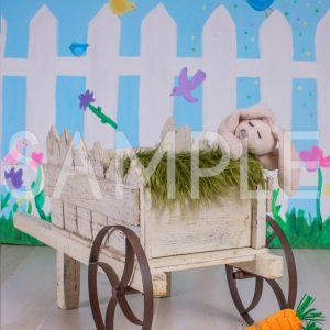 easter wagon wheel barrow bunny newborn backdrop