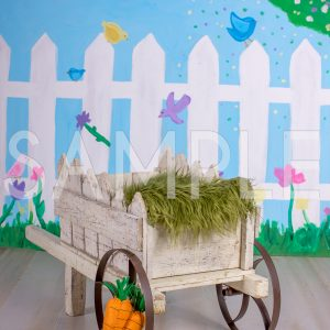 easter wheel barrow wagon newborn digital backdrop