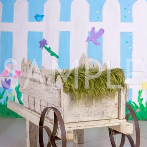 spring wagon wheel barrow newborn spring backdrop