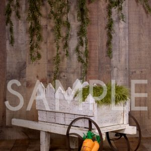 newborn wagon backdrop easter
